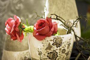 розы великолепные
