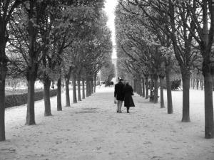 Красивая пара гуляет