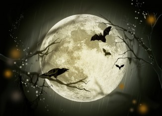 календарь луна
